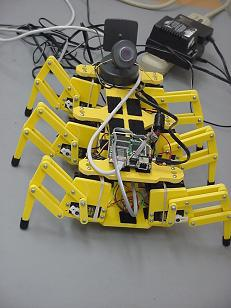 Internet control 6 legged robot in 2000